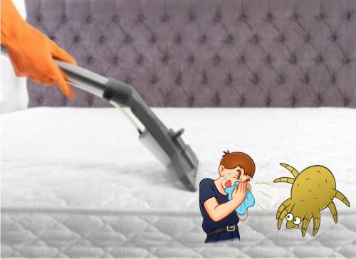 Cómo eliminar ácaros de la cama