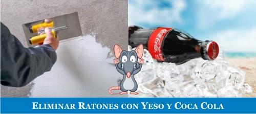 remedios caseros para eliminar las ratas y ratones